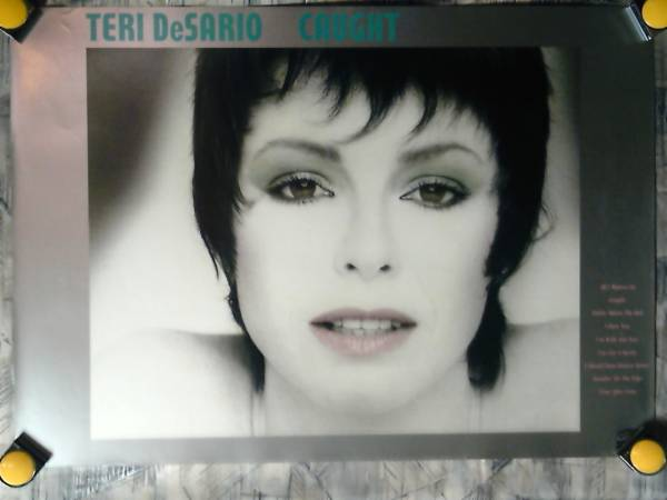 p2【ポスター/B-2】テリー デサリオ-Teri DeSario