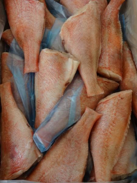 ☆業務用** うろこ・ひれ処理済  赤魚 22尾  5キロ 冷凍_画像1