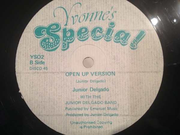 ■Junior Delgado/Open The Door To Your Heart■KILLER ROOTS!_画像2