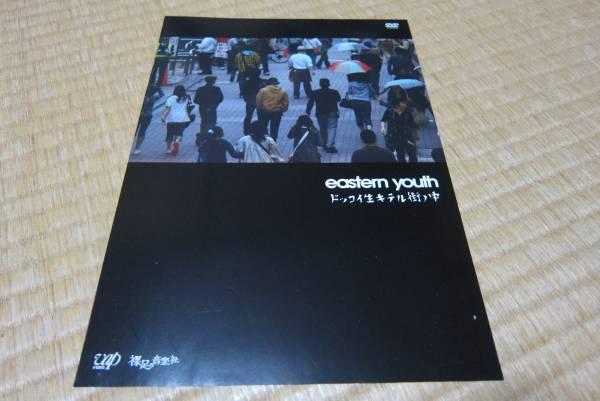 イースタン・ユース eastern youth dvd 発売 告知 チラシ