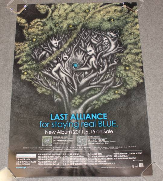 Ж5 告知ポスター LAST ALLIANCE[for staying real BLUE.]