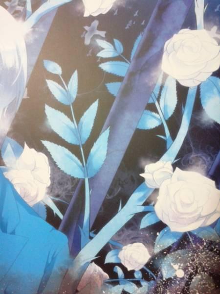 ヴァルヴレイヴ同人誌◆『BABES IN THE BIRDCAGE』 エルエルフ×アードライ_画像2