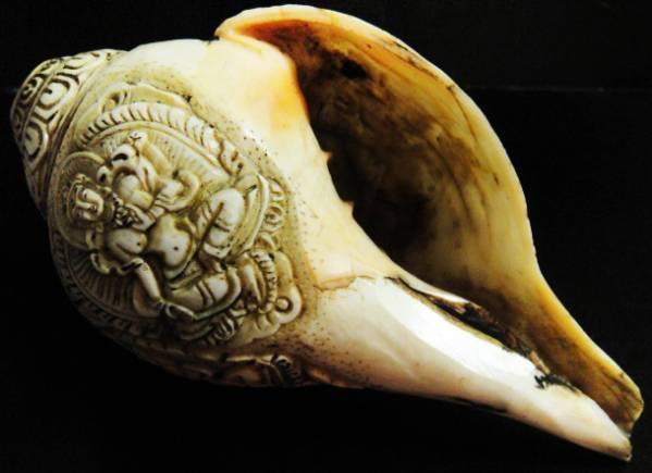 法具 法螺貝(シャンカ)グリーンターラー(緑多羅菩薩)B