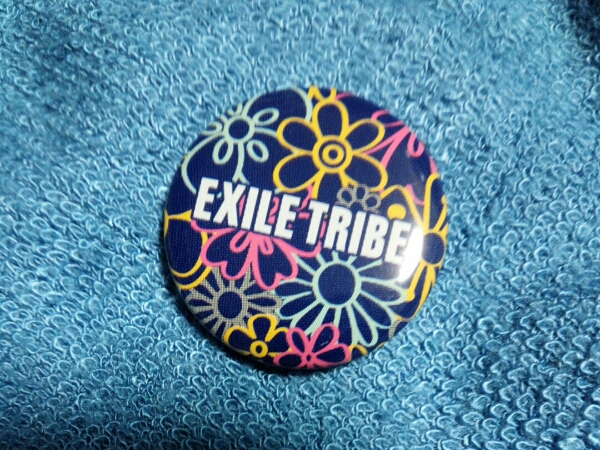 EXILE TRIBE TOWER OF WISH 2012 缶バッジ ロゴ②