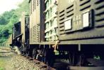 ◆【即決写真】C56149+貨 1968.8 小海線 甲斐大泉/20-6