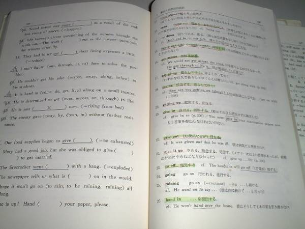 英文法頻出問題演習 駿台予備学校副読本 増補改訂版_画像3