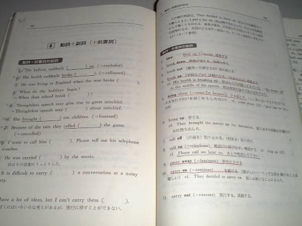 英文法頻出問題演習 駿台予備学校副読本 増補改訂版_画像2