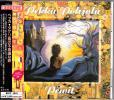 ♪PEKKA POHJOLA/ペッカ・ポーヨラ【タゲリ鳥の不思議な旅】帯付