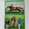 エアグルーウ゛ 1998年 札幌記念 武豊騎手 A4 写真 2枚セット
