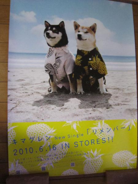 【ポスター】 「キマグレン リメンバー」