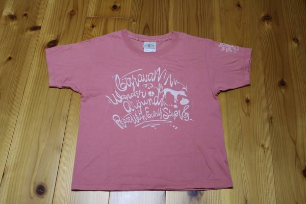 ◆ CARAVAN Tシャツ YOUTH L HARVESTgreenroom SLOW FLOW MUSIC