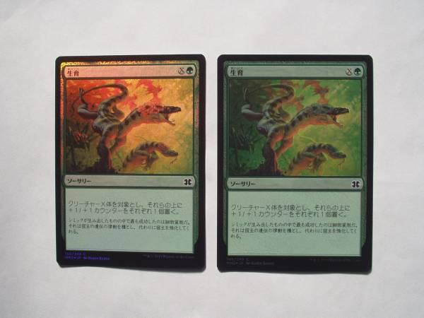 MTG 生育/Thrive foil 日本語2枚_画像1