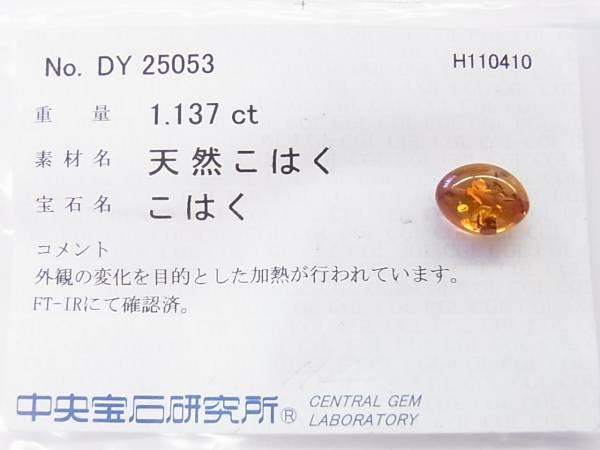 【限界市場】★送料無料★天然琥珀★デザインネックレス★T_「中央宝石研究所」の鑑別結果です
