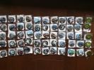 JR東日本 駅からハイキング 完歩記念 缶バッチ 50個セット
