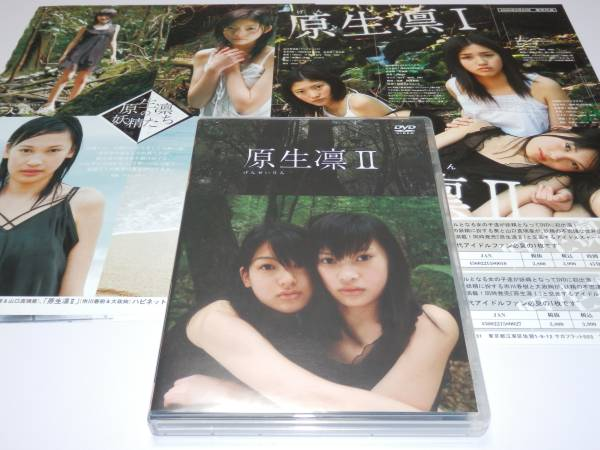 DVD『 原生凛Ⅱ 』+チラシ+切り抜き 大政絢 市川春樹 グッズの画像