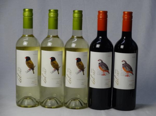 チリ白赤ワイン5本セット デル・スール カルメネール ミディ_画像1