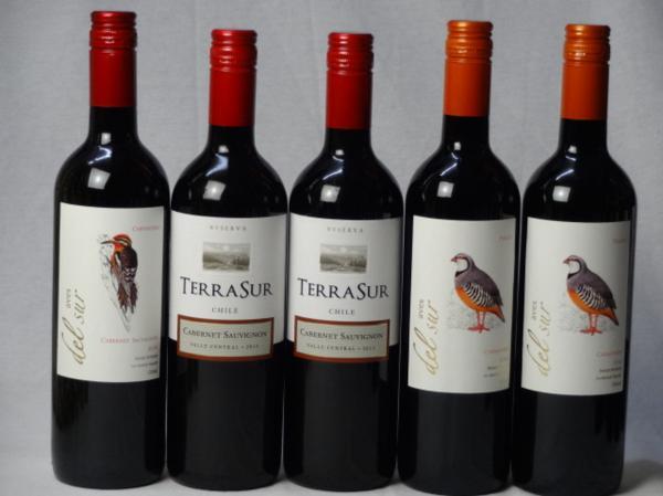 チリ赤ワイン5本セット デル・スール カベルネ・ソーヴィニ_画像1