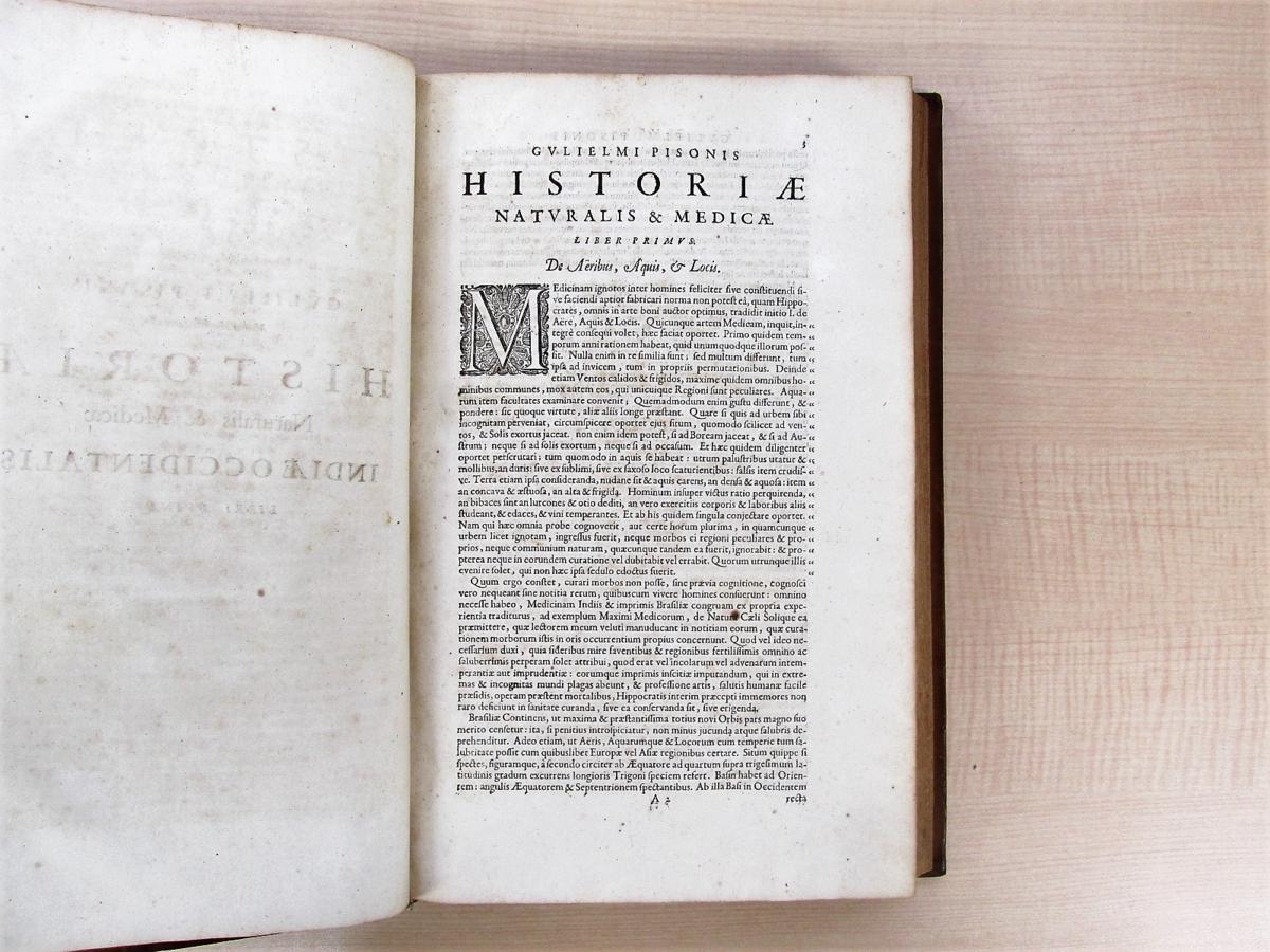 1658年刊『De Indiae utriusque re naturali et medica』熱帯医学の父ウイレム・ピソと博物学者マルクグラーフの歴史的名著_画像4