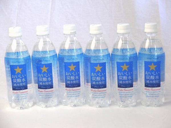 サッポロおいしい炭酸水 ペットボトル 500ml×10本_画像1