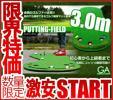 М●□激安 ゴルフ 自宅で毎日秘密特訓 パター練習マット 3