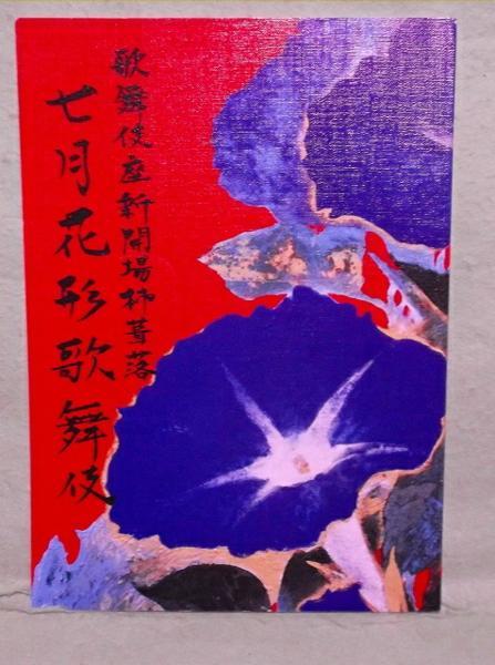 A-9【パンフ】七月花形歌舞伎 平成25年