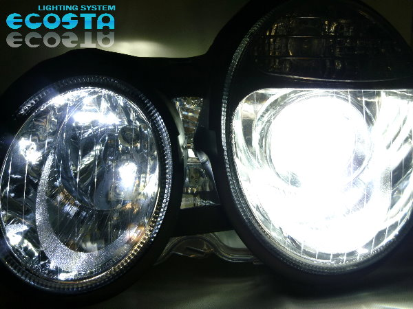 バラスト 左右 交換 純正 D2 仕様車用 3点セット ECOSTA (B)_《1年保証付》