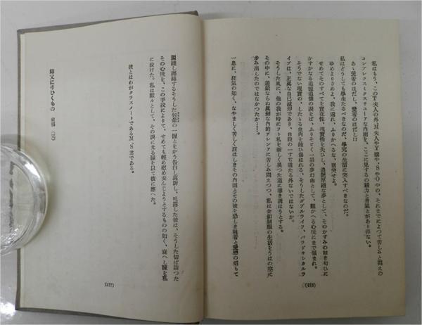 レアBOOK☆大正12年発行 『教職10年師父に弓ひくもの 前編 田淵巌』隆文館【AR0330】_画像9