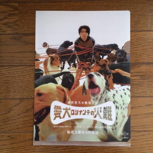 ★非売品 新品 堂本剛主演「愛犬ロシナンテの災難」ファイル
