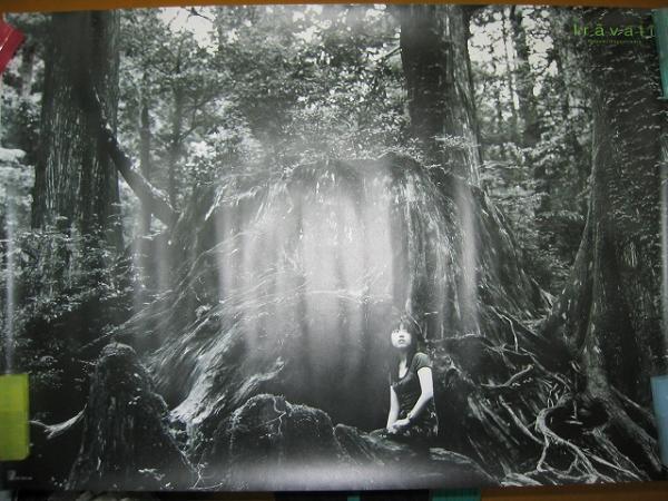 43P●林原めぐみ●ポスター●