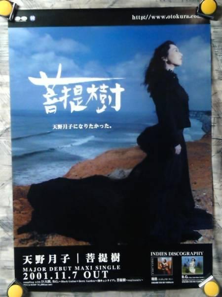 p7【ポスター/B-2】天野月子→天野月/'01-菩提樹・メジャー