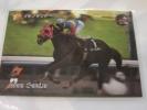 イシノサンデー、四位騎手(京都・金杯)競馬カード