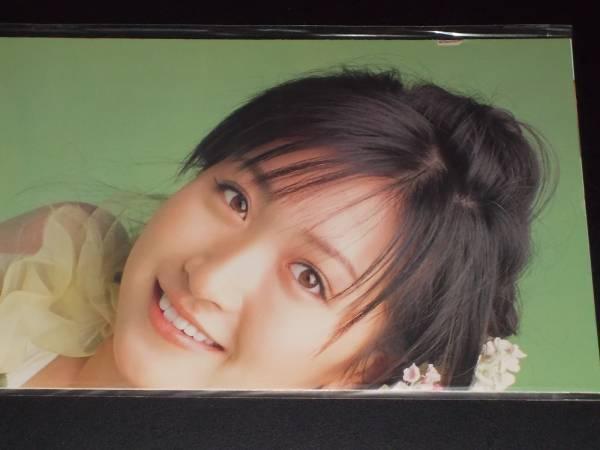 ★ 横山ルリカ / はなまる幼稚園 両面ポスター ヤングガンガン