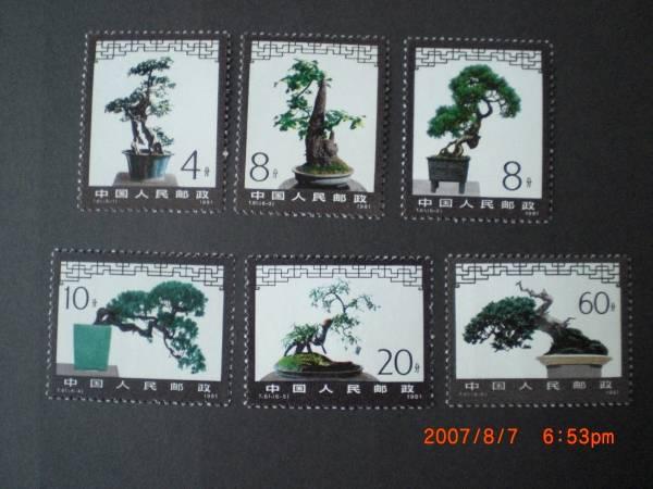 盆栽の切手‐アキニレ他 6種完 未使用 1981年 中共・新中国 T61 VF・NH_画像1