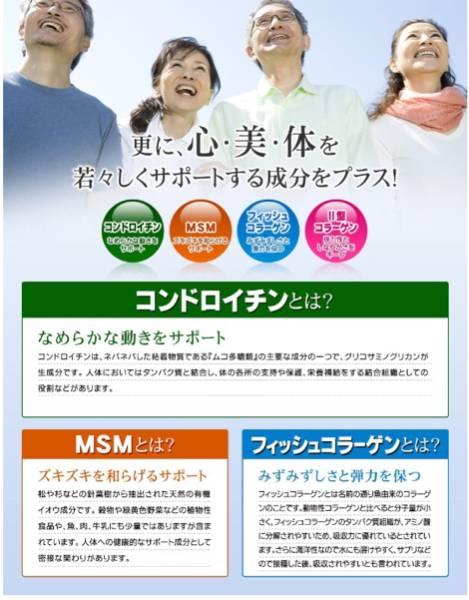 2型コラーゲン配合グルコサミン コンドロイチン MSM 1ヵ月分 健康食品 サプリメント_画像2