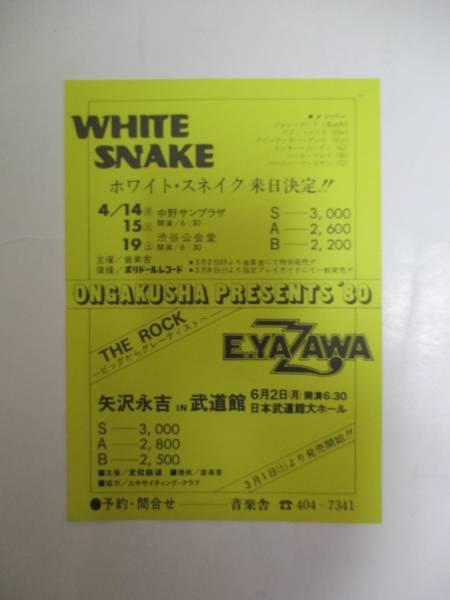 チラシ ホワイトスネイク 矢沢永吉 Whitesnake