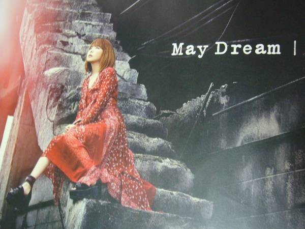 B2大 ポスター aiko may dream