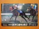 テレカ●●第47回阪神3歳牝馬S ビワハイジ