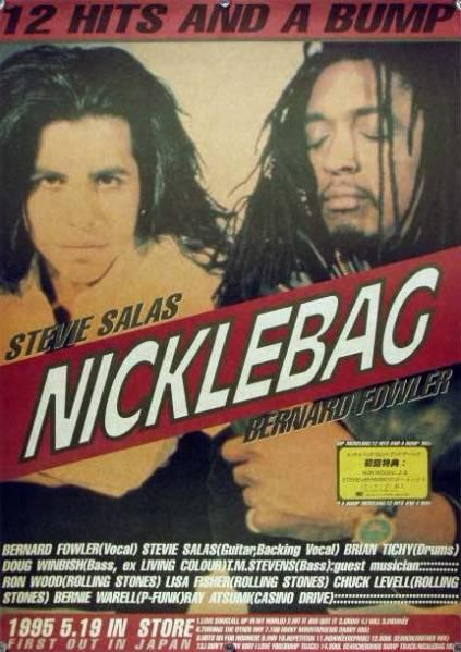 NICKLEBAG スティーヴィー・サラス B2ポスター (R03008)