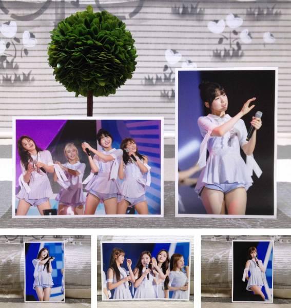 Oh my girl★韓国idol★2016.8青少年文化Festival★FC生写真30枚