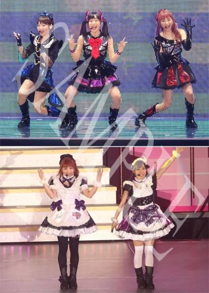 Pile&μ's【ラブライブ】『Final LoveLive! 東京ドーム』生写真