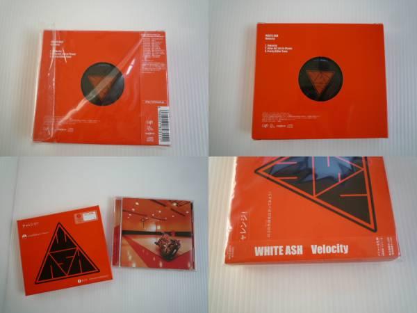 【お得!】★ホワイトアッシュ/WHITE ASH★ Velocity CD メジャー_画像3