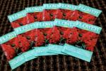 サルビア種 小袋X10個 Sageプラス10個のお花の種