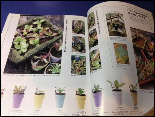 ベランダでおいしい野菜づくり たなかやすこ 家庭菜園 ガーデン_画像1