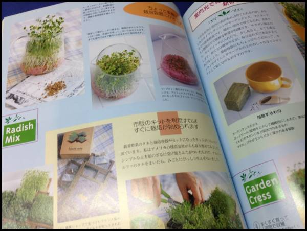 ベランダでおいしい野菜づくり たなかやすこ 家庭菜園 ガーデン_画像2
