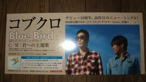【ミニポスターF13】 コブクロ/Blue Bird 非売品!