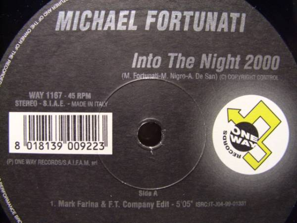 "E U R O 12""◆MICHAEL FORTUNATI / INTO THE N I G H T 2000_画像1"