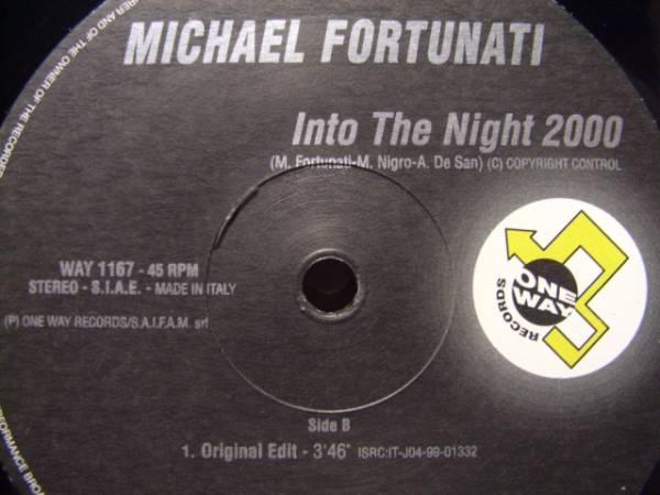 "E U R O 12""◆MICHAEL FORTUNATI / INTO THE N I G H T 2000_画像2"