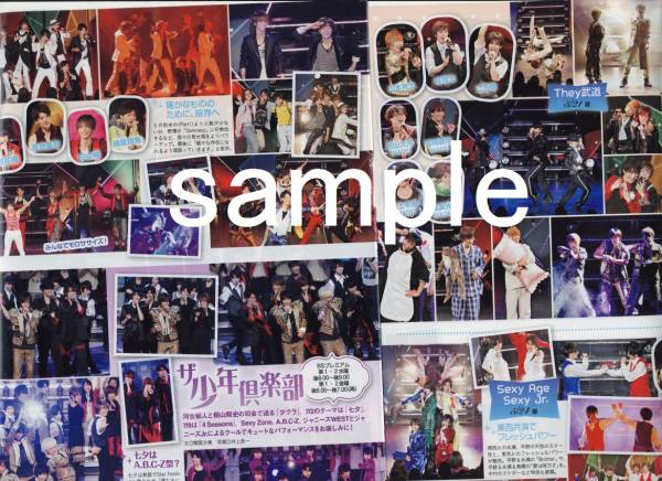 2p4◆TVfan 2014.8号 ザ少年倶楽部 ジャニーズJr.
