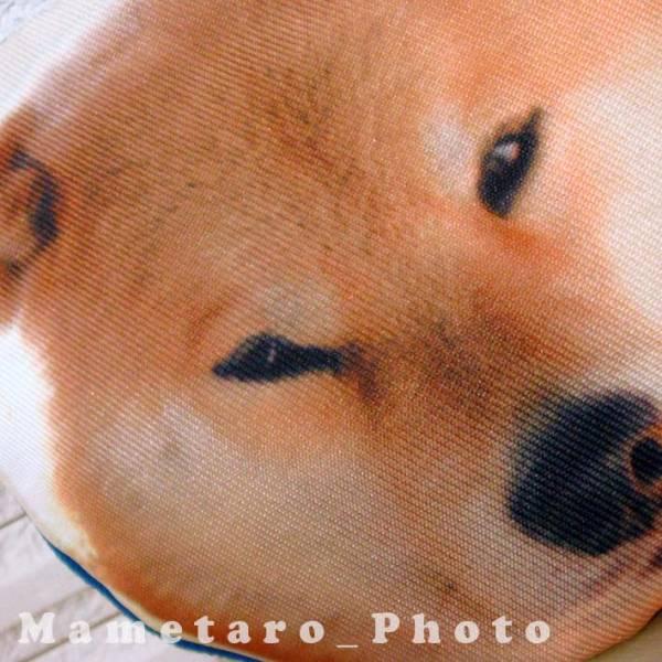 柴犬まる いろんなかお がまぐち【ドヤ顔】_画像2