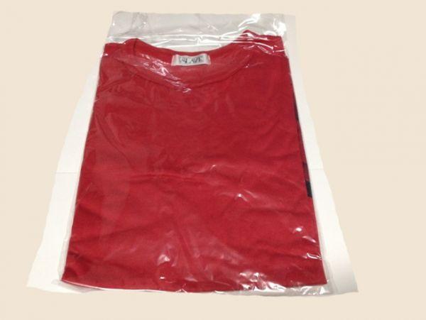未着用 LUNA SEA 2000 BRAND NEW CHAOS 福岡限定Tシャツ 赤